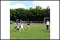 Album Sportabzeichentag der Schulen in Treysa:  Aktion
